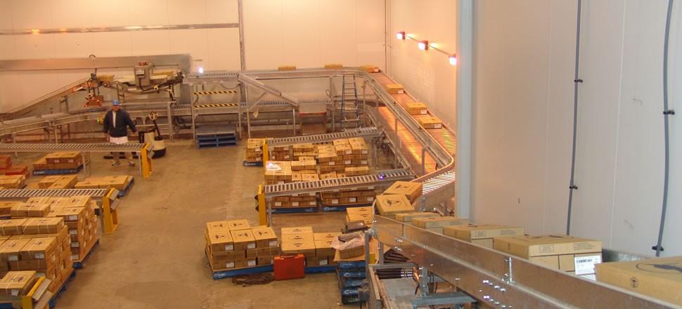 Abattoir Conveyor Systems